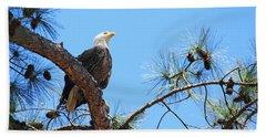 Beach Sheet featuring the photograph Bald Eagle by Geraldine DeBoer