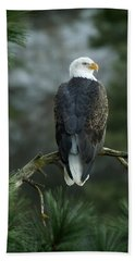 Bald Eagle In Tree Beach Sheet
