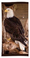 Bald Eagle Beach Sheet