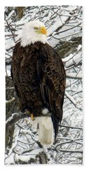 Beach Towel featuring the photograph Bald Eagle by Penny Meyers
