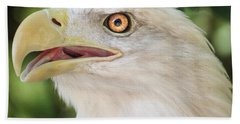Beach Towel featuring the photograph American Bald Eagle Portrait - Bright Eye by Patti Deters