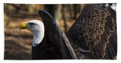 Bald Eagle Preparing For Flight Beach Sheet by Chris Flees