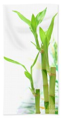 Bamboo Stems And Leaves Beach Towel