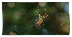 Banana Spider In Web Beach Sheet