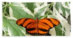 Banded Orange Longwing Butterfly Beach Towel by Judy Whitton
