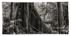 Strangler Fig And Cypress Tree Beach Sheet