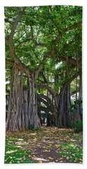 Banyan Tree At Honolulu Zoo Beach Towel