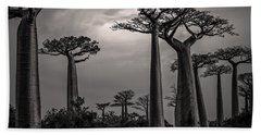 Baobab Highway Beach Towel