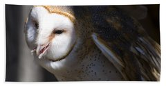 Barn Owl 1 Beach Sheet by Chris Flees