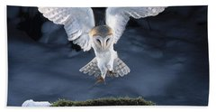 Barn Owl Landing Beach Sheet by Manfred Danegger