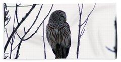 Barred Owl 3  Beach Towel