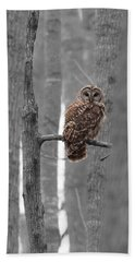 Barred Owl In Winter Woods #1 Beach Sheet