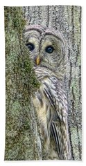 Barred Owl Peek A Boo Beach Towel
