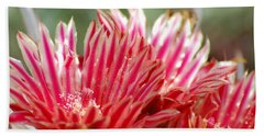Barrel Cactus Flower Beach Towel