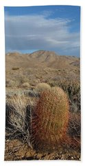 Barrel Cactus In Winter Beach Sheet