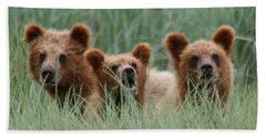 Bear Cubs Peeking Out Beach Sheet by Myrna Bradshaw