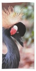 Beautiful Black Crown Crane Beach Towel by Belinda Lee