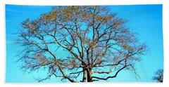Beach Sheet featuring the photograph Beautiful Branching by Debra Martz