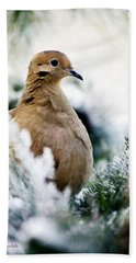 Beautiful Dove Beach Towel
