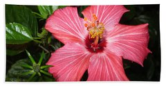 Beautiful Hibiscus Beach Sheet