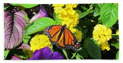 Beach Towel featuring the photograph Beauty All Around by Cynthia Guinn