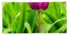 Beauty At A Glance- Purple Gems- Purple Tulips Rhode Island Tulips Purple Flower Beach Sheet by Lourry Legarde