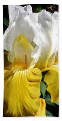 Beauty For The Eye Beach Towel by Bruce Bley