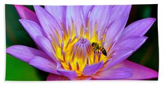 Beautiful Bee And Water Lily Beach Sheet