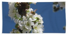 Bee On Cherry Blossoms Beach Sheet
