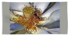 Bee On Lotus Beach Towel by Savannah Gibbs