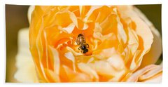 Bee Pollinating A Yellow Rose, Beverly Beach Towel by Panoramic Images
