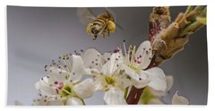 Bee Working The Bradford Pear 2 Beach Sheet