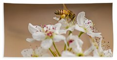 Bee Working The Bradford Pear 4 Beach Towel