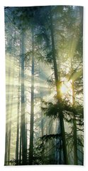 Behold The Light In The Fall Forest Beach Towel