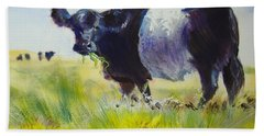 Belted Galloway Cow Beach Towel