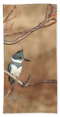 Belted Kingfisher Beach Towel