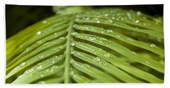 Beach Towel featuring the photograph Bending Ferns by Carolyn Marshall
