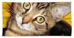 Bengal Cat Kitten Beach Sheet