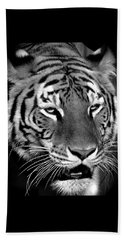 Bengal Tiger In Black And White Beach Sheet by Venetia Featherstone-Witty