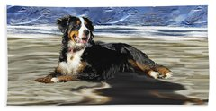 Bernese Mountain Dog Beach Sheet