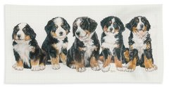 Bernese Mountain Dog Puppies Beach Towel