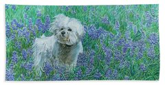 Beach Towel featuring the drawing Bichon In The Bluebonnets by Dominic White