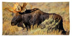 Beach Towel featuring the photograph Big Boy by Greg Norrell