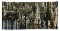 Big Cypress National Preserve Beach Towel