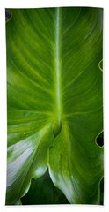 Aaron Berg Photography Beach Towel featuring the photograph Big Green by Aaron Berg