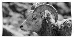 Big Horn Sheep Profile Beach Towel
