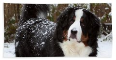 Beach Towel featuring the photograph Snow Happy by Patti Whitten