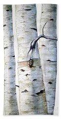 Birch Trees Beach Sheet