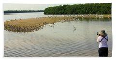 Beach Towel featuring the photograph Bird Experience by Rosalie Scanlon