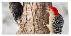Bird Feeder Stand Off Square Beach Towel by Bill Wakeley